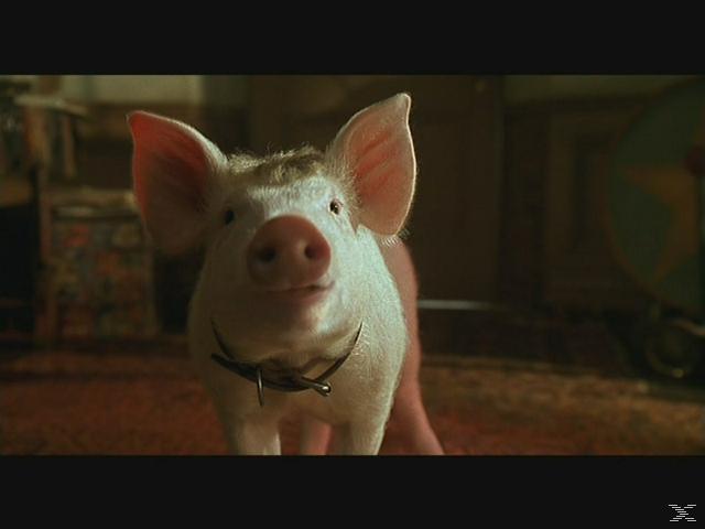 Doppelpack - Ein Schweinchen namens Babe & Schweinchen Babe in der großen Stadt [DVD]