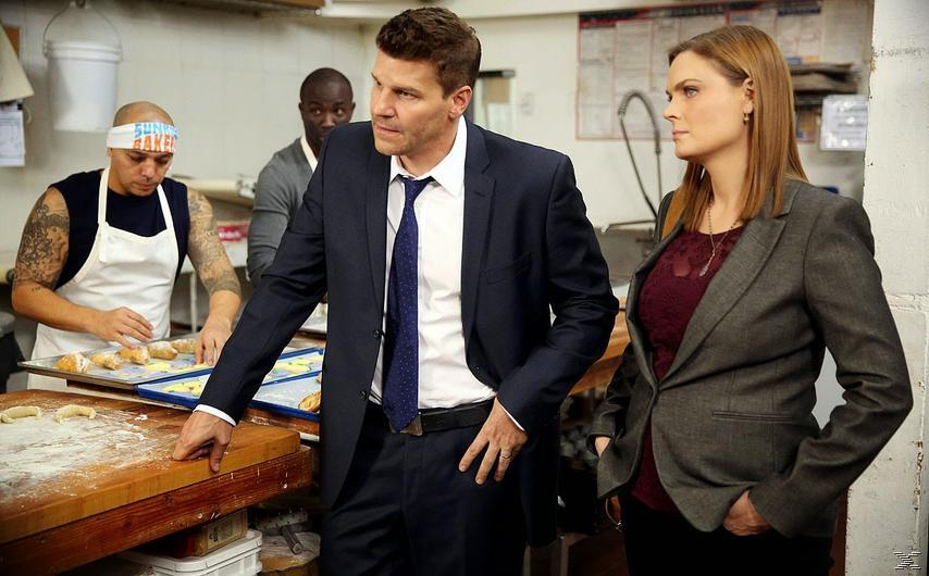 Bones - Staffel 10 [DVD]