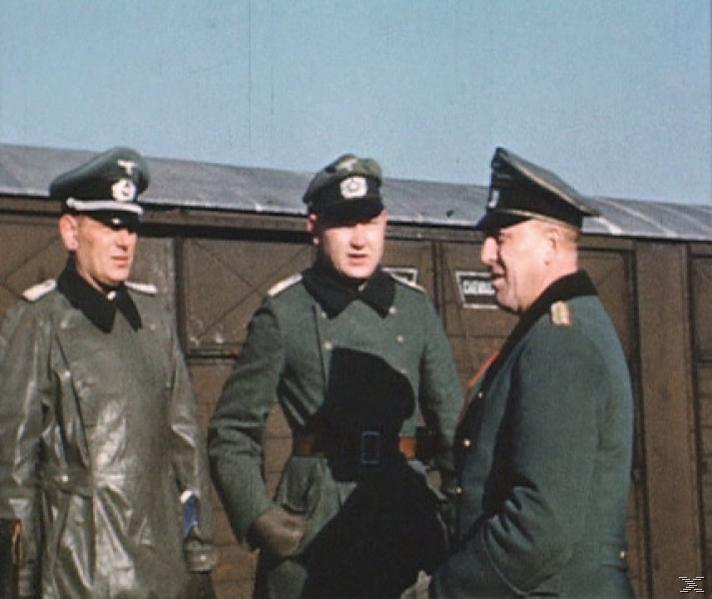 Die Geschichte der 23. Infanterie-Division - (DVD)
