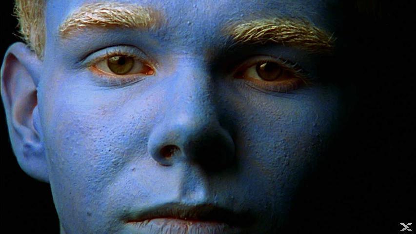 Trek Nation - (DVD)