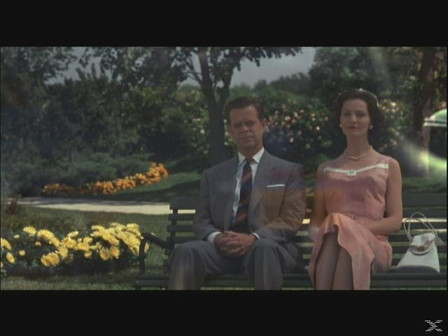 Pleasantville [DVD]