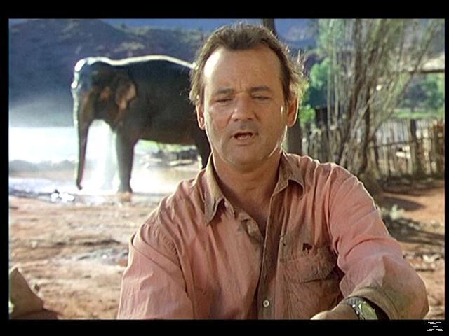 Die dicke Vera-Hilfe, ich habe einen Elefanten - (DVD)