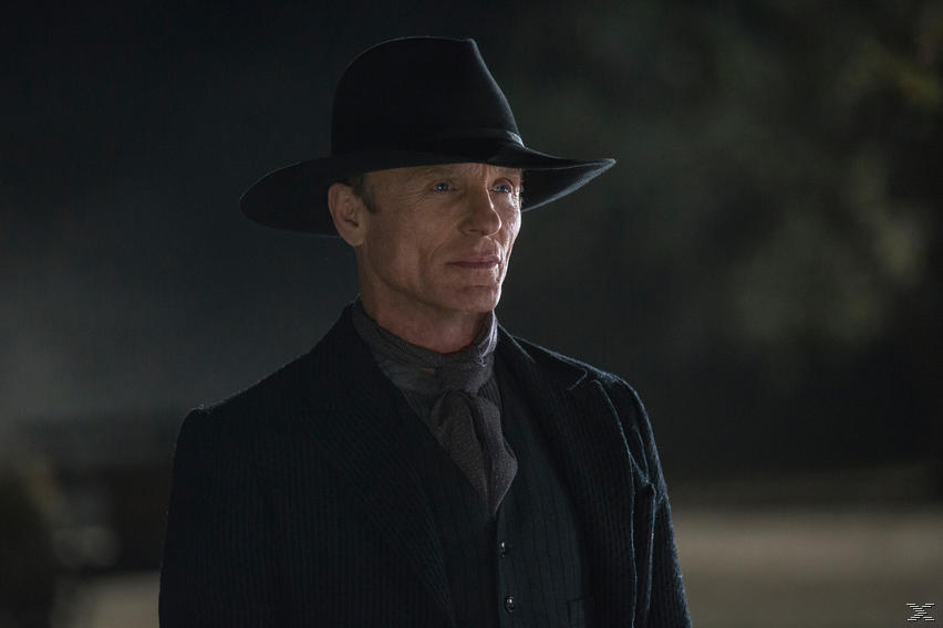 Westworld - Die komplette erste Staffel - (Blu-ray)