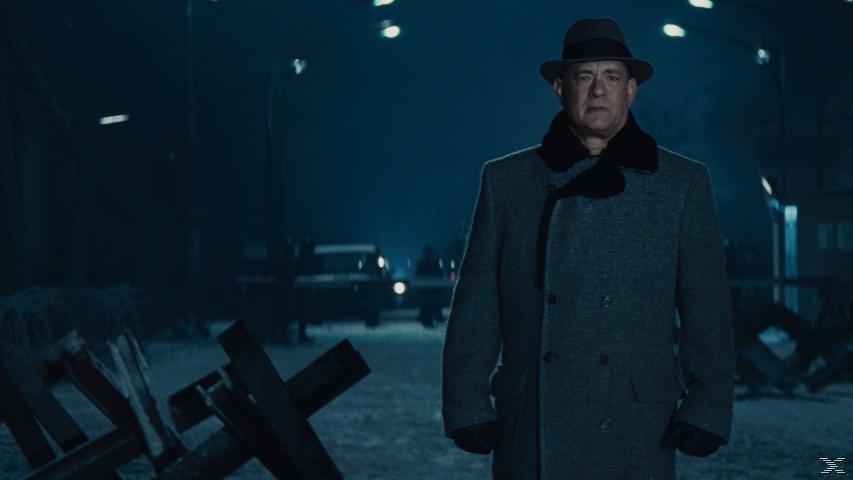 Bridge of Spies - Der Unterhändler [DVD]