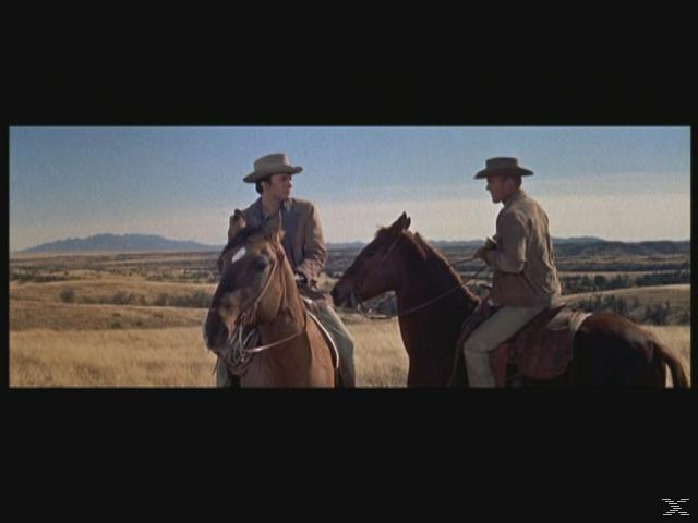 Duell im Morgengrauen - (Blu-ray)