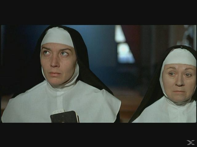 Das Kloster zum heiligen Wahnsinn - (DVD)