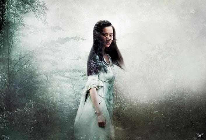 A Chinese Ghost Story - Die Dämonenkrieger - (Blu-ray)