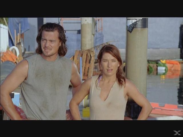 The Shark Box - (DVD)