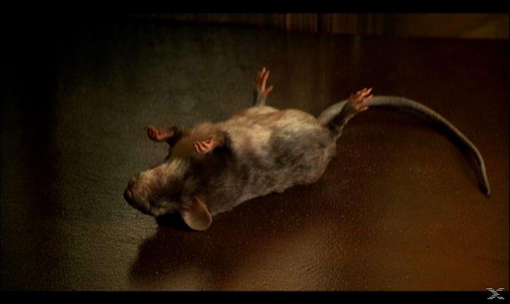 Mäusejagd [DVD]