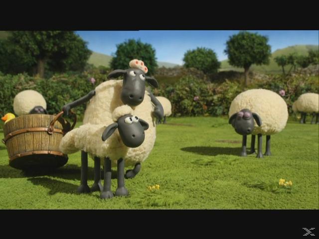 Shaun das Schaf - Raserei [DVD]