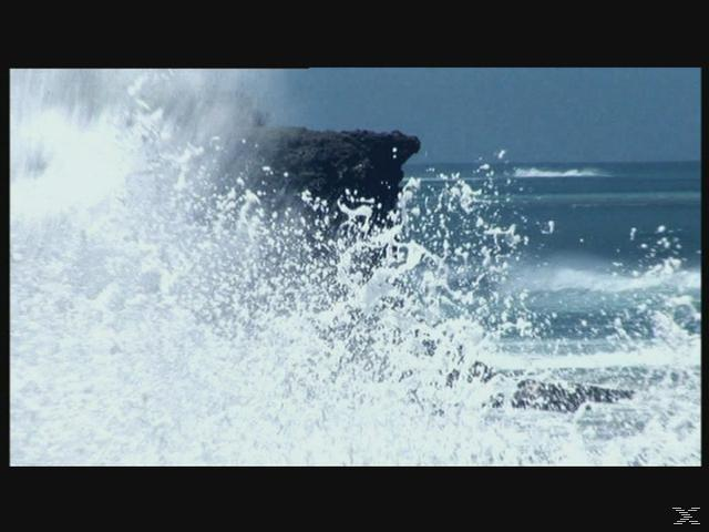 Was ist was - Meereskunde [DVD]