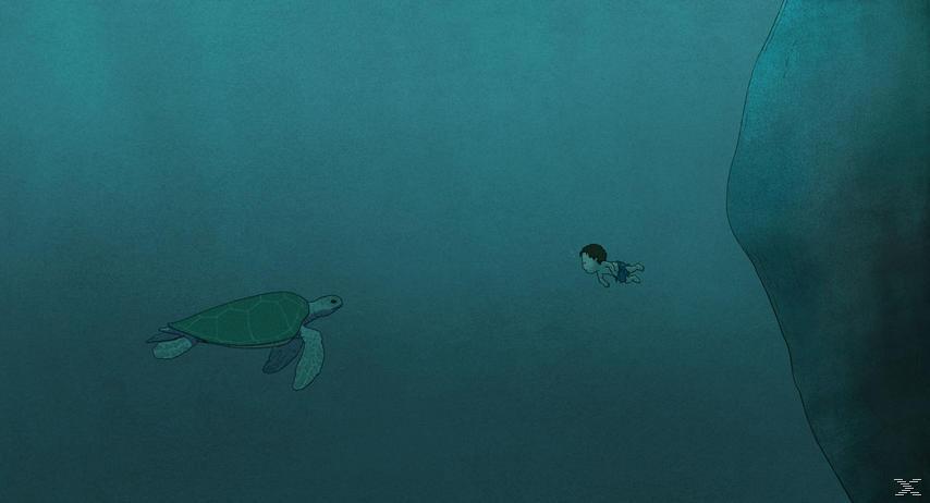 Die Rote Schildkröte - (DVD)