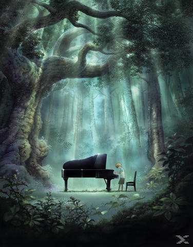 Piano Forest - (DVD)