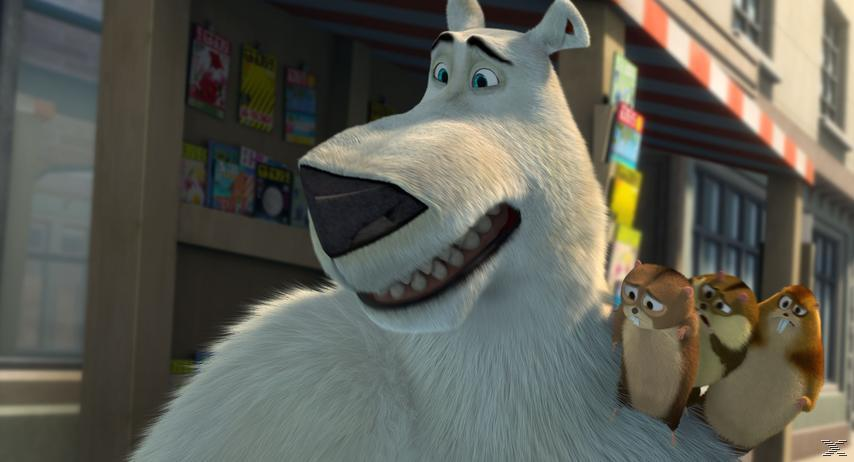 Norm - König der Arktis [DVD]