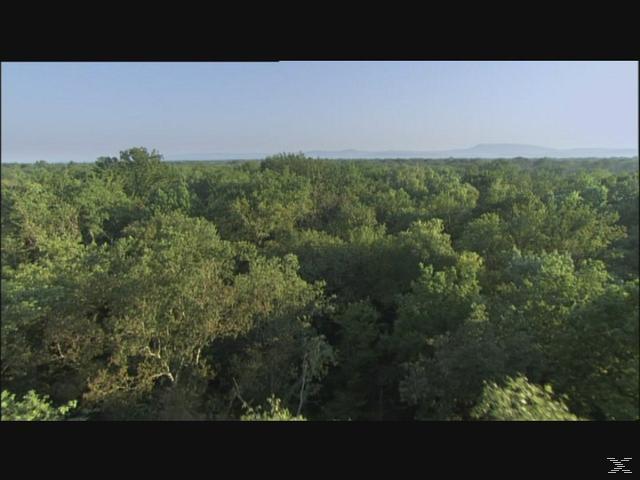 Planet Erde - (Blu-ray)
