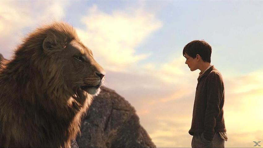 Die Chroniken von Narnia: Der König von Narnia - (DVD)