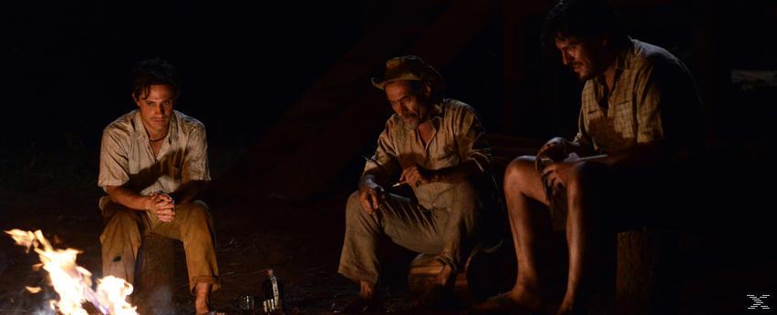 El Ardor - Der Krieger aus dem Regenwald [DVD]