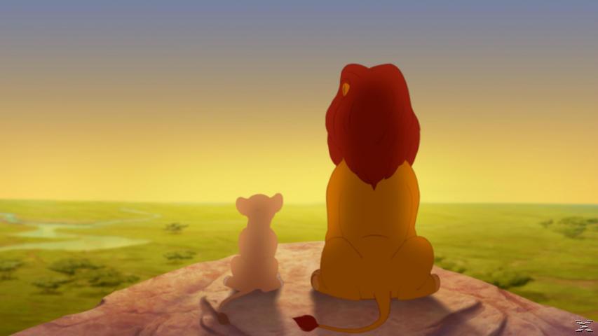 Die Garde der Löwen - Das Gebrüll ist zurück - (DVD)