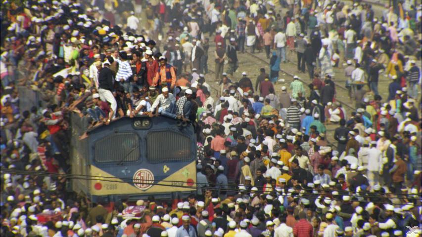 Population Boom - (DVD)