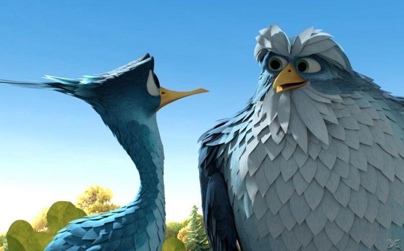 Sam O'Cool - Ein schräger Vogel hebt ab! [DVD]