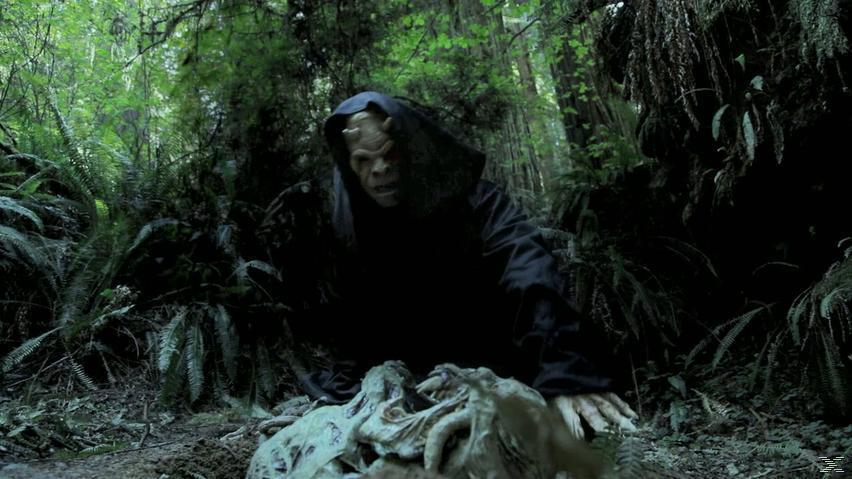 Demon Hunter - (Blu-ray)