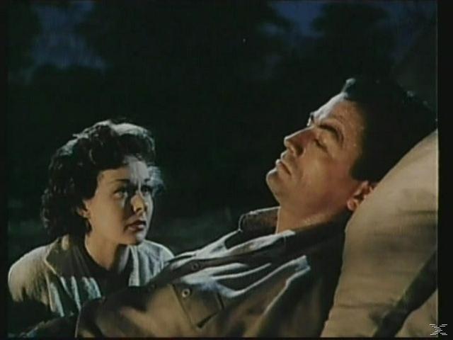 Schnee am Kilimandscharo (1952) - (DVD)