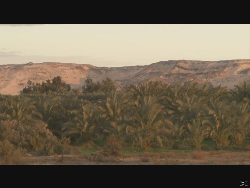 welt weit - Ägypten [DVD]