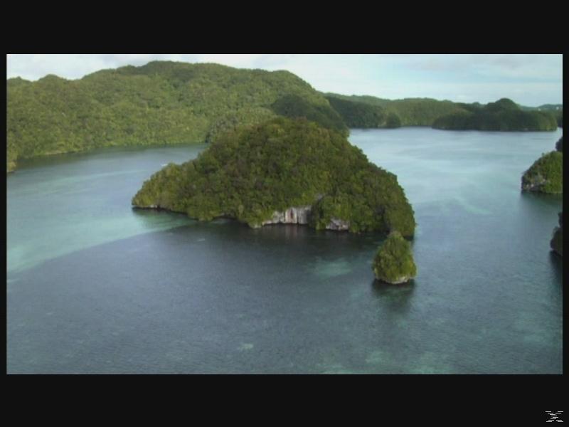 Die Zwerge von Palau - Auf den Spuren der echten Hobbits - (Blu-ray)
