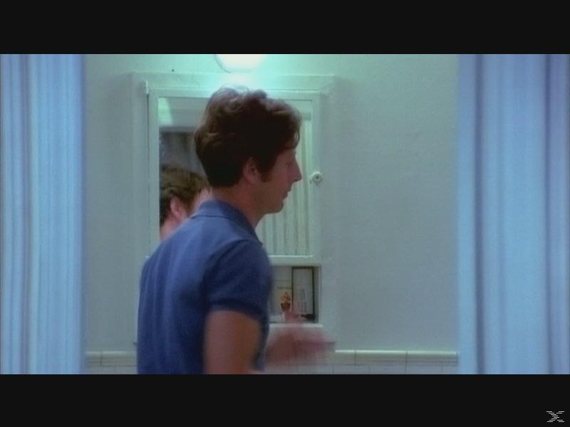 THE BOYS IN THE BAND (DIE HARTEN UND DIE ZARTEN) - (DVD)