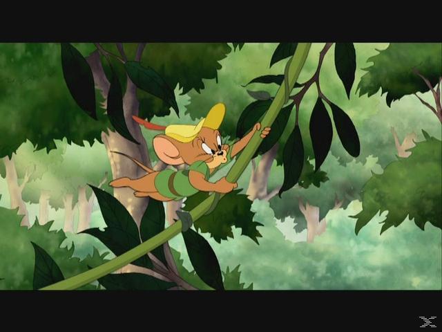 Tom & Jerry - Robin Hood und seine tollkühne Maus [DVD]