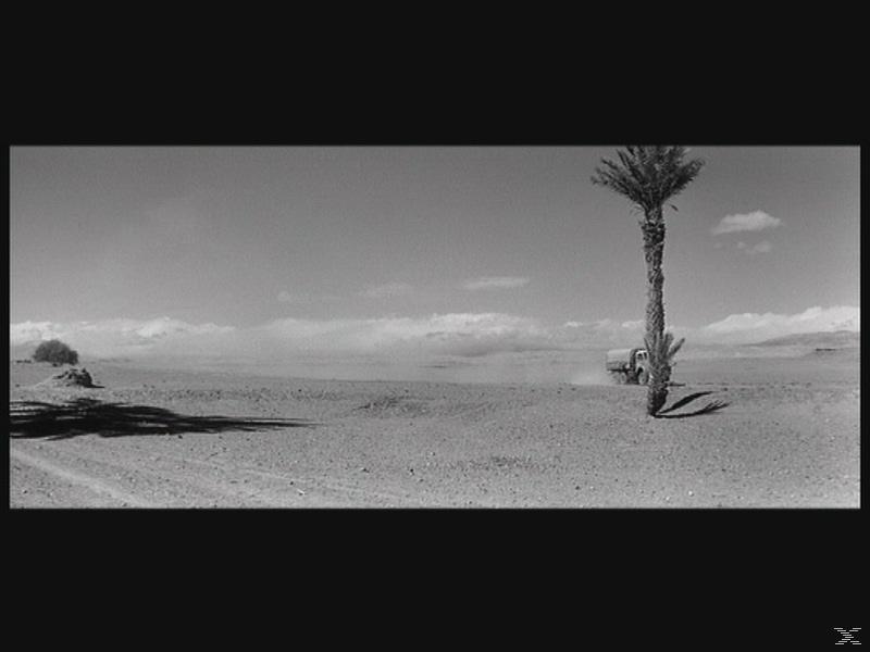 Cent mille dollars au soleil - (DVD)