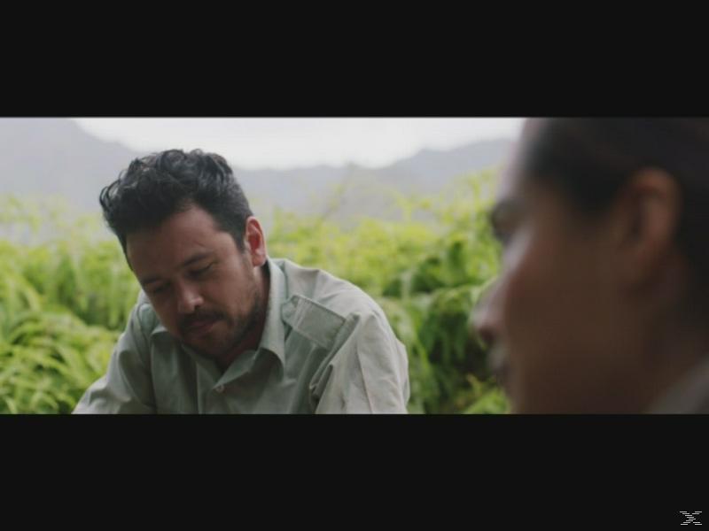 Camino - (Blu-ray)