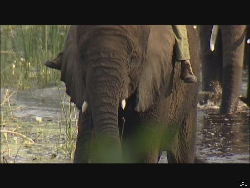 BR-Fernweh: Botswana [DVD]