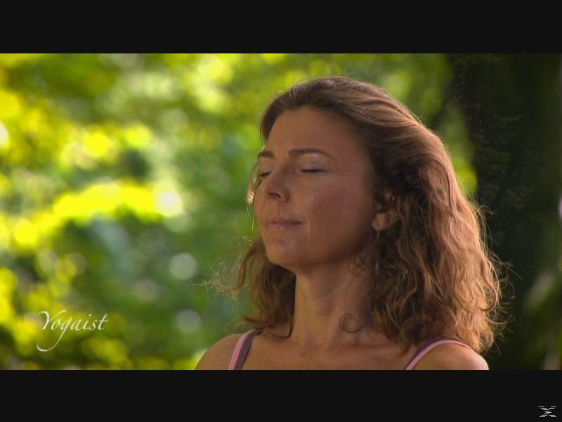 Fit For Fun - Yoga für Sportler - die perfekte Ergänzung für alle Sportarten - (DVD)