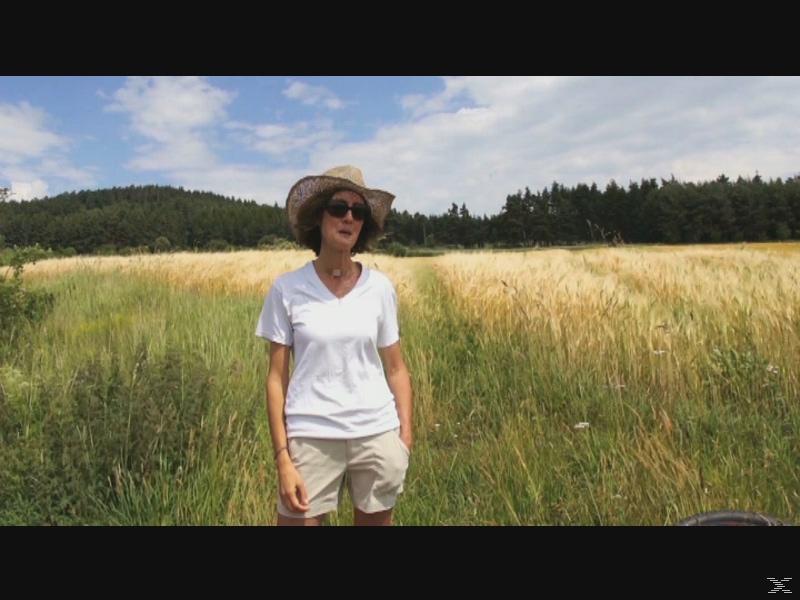 Camino de Santiago – Eine Reise auf dem Jakobsweg [Blu-ray]