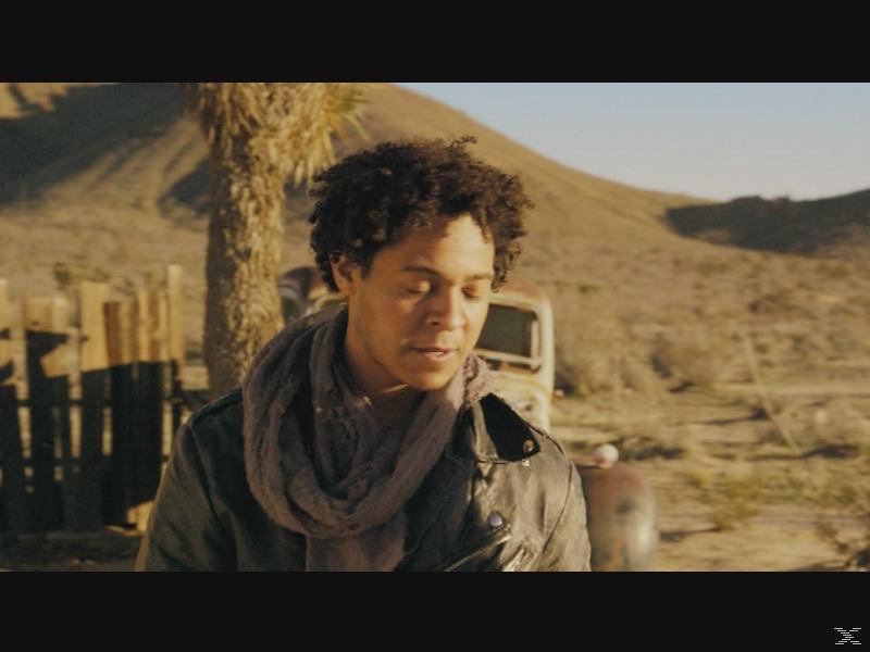 Road Wars - Willkommen in der Hölle - (DVD)