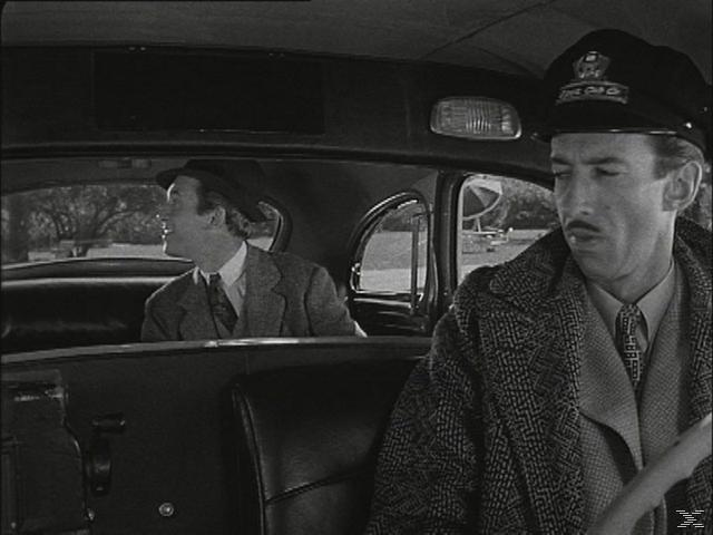 James Stewart Collection (Mein Freund Harvey / Die Glenn Miller Story / Das Fenster zum Hof) [DVD]