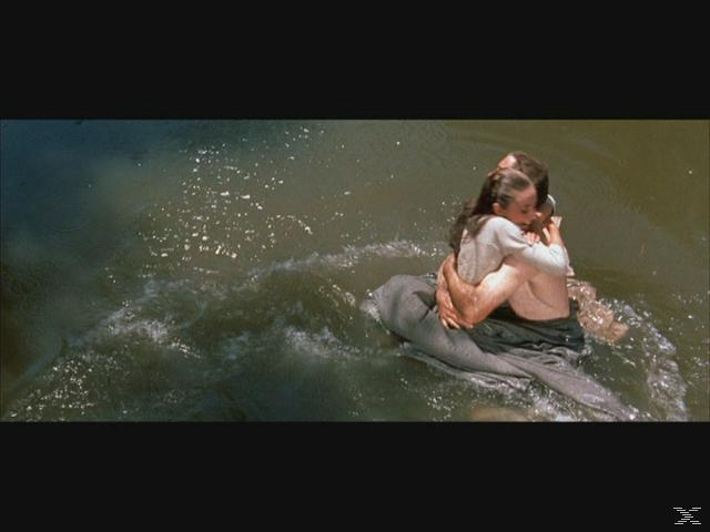 DENEN MAN NICHT VERGIBT [Blu-ray]