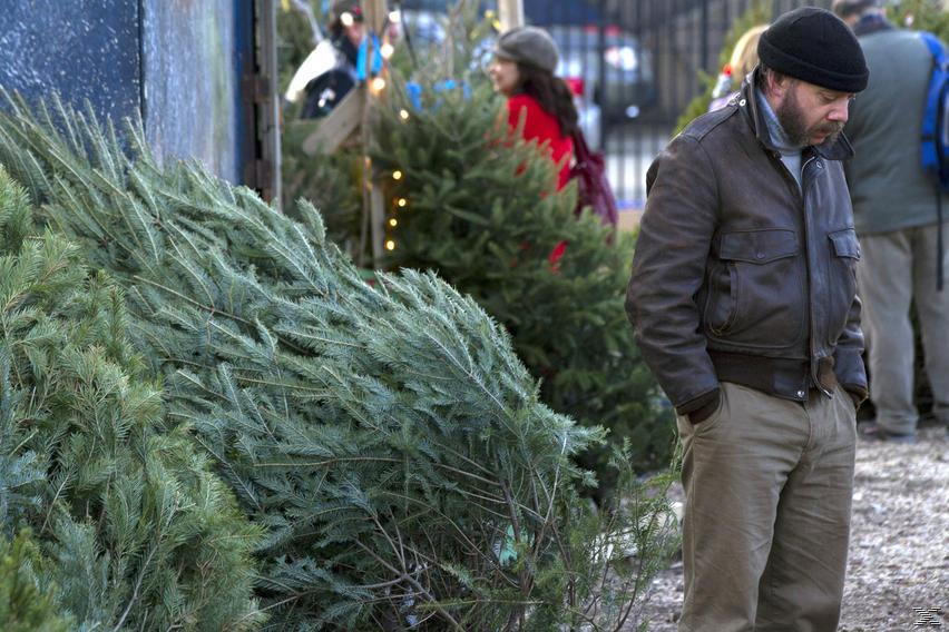 Ένα Δέντρο δε Φέρνει τα Χριστούγεννα DVD