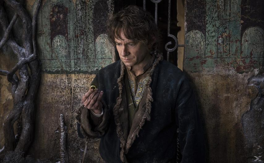 Der Hobbit: Die Schlacht der fünf Heere (Extended Edition) - (DVD)