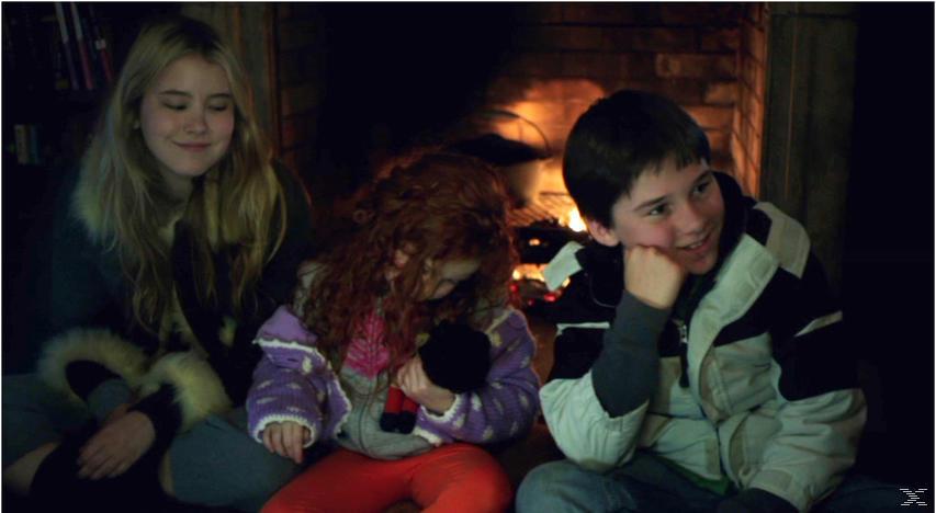 Weihnachten allein zu Haus [DVD]