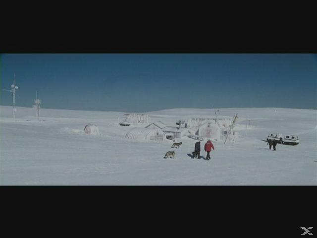 Antarctica - Gefangen im Eis - (Blu-ray)