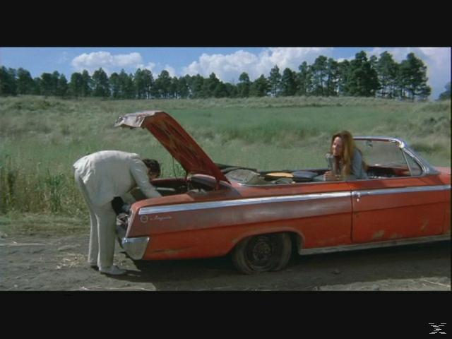 Bring mir den Kopf von Alfredo Garcia (Mediabook, 1 Blu-ray und 2 DVDs) - (Blu-ray + DVD)