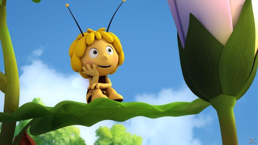 Die Biene Maja 3D - DVD 9 [DVD]