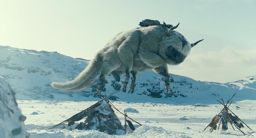 Die Legende von Aang Action Blu-ray
