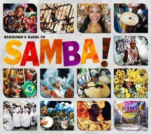 Beginner's Guide To Samba large