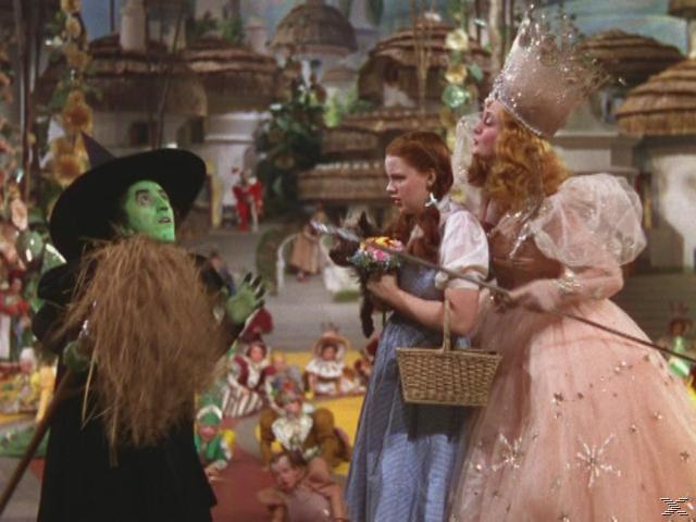 Der Zauberer von Oz [DVD]