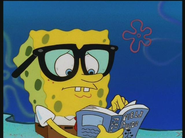 SpongeBob Schwammkopf – Die zehn glücklichsten Momente [DVD]