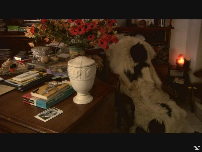 SERGEJ IN DER URNE (+BONUS) - (DVD)