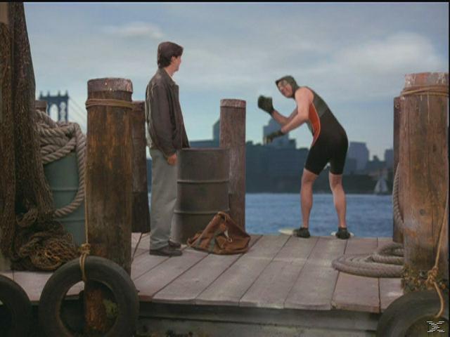 Seinfeld - Staffel 8 [DVD]